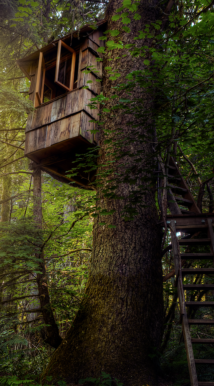 iPhone6-HTreehouse.jpg