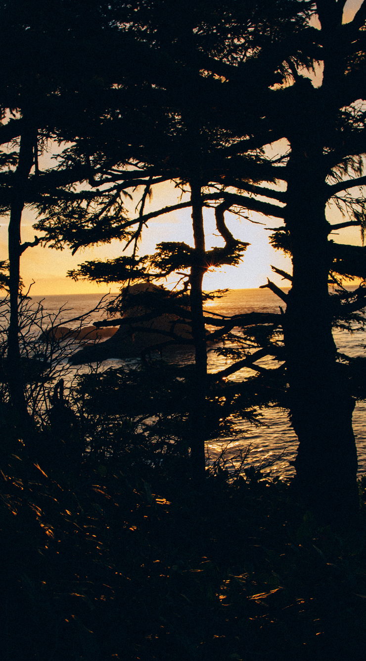 iPhone6-Coast.jpg