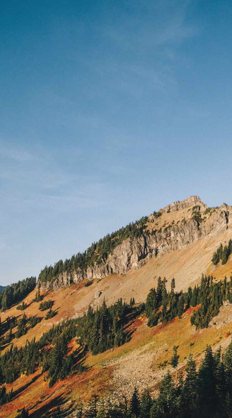 iPhone6-Mts.jpg