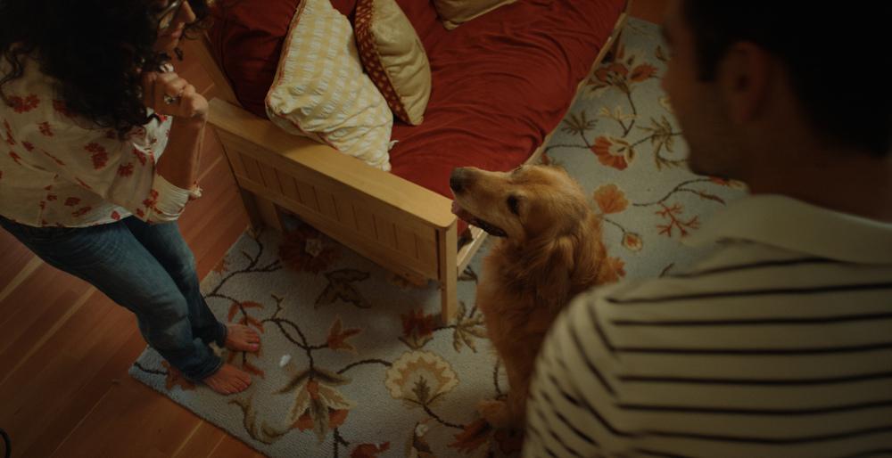 home_dogwhisperer.jpg