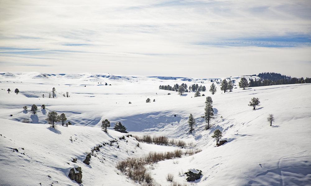 20160216-PGI-Colorado-66.jpg