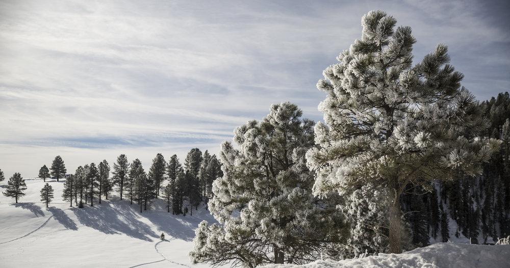 20160216-PGI-Colorado-70.jpg