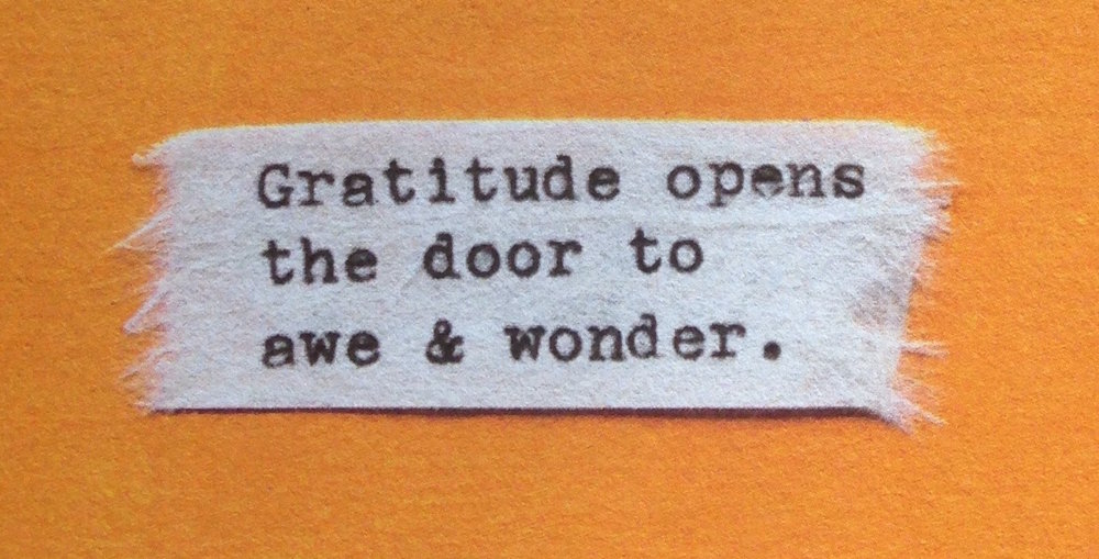 Discover the life changing magic of gratitude...
