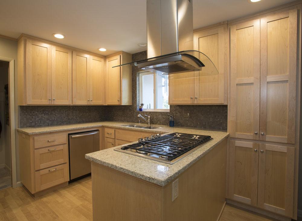 Bon Total Kitchen Renovation   Petaluma, CA