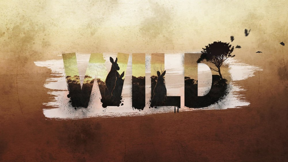 Nat Geo WILD    Australia's deadly monsters Broadcast Design | Design & Animation   View