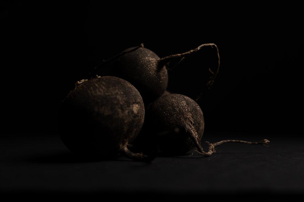 black radish -2-2.jpg