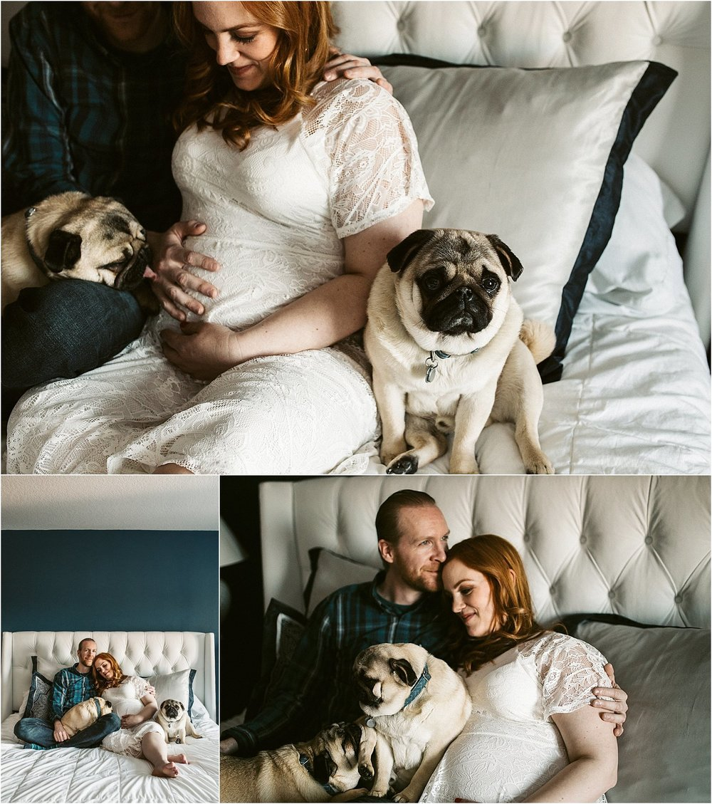 Photo collage pugs love during maternity session