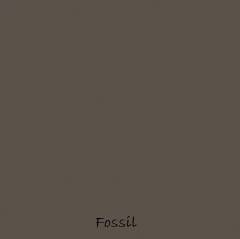 6 Fossil labelled.jpg