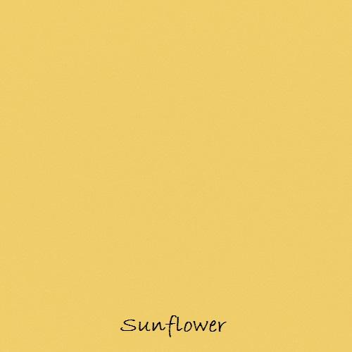 11 Sunflower labelled.jpg