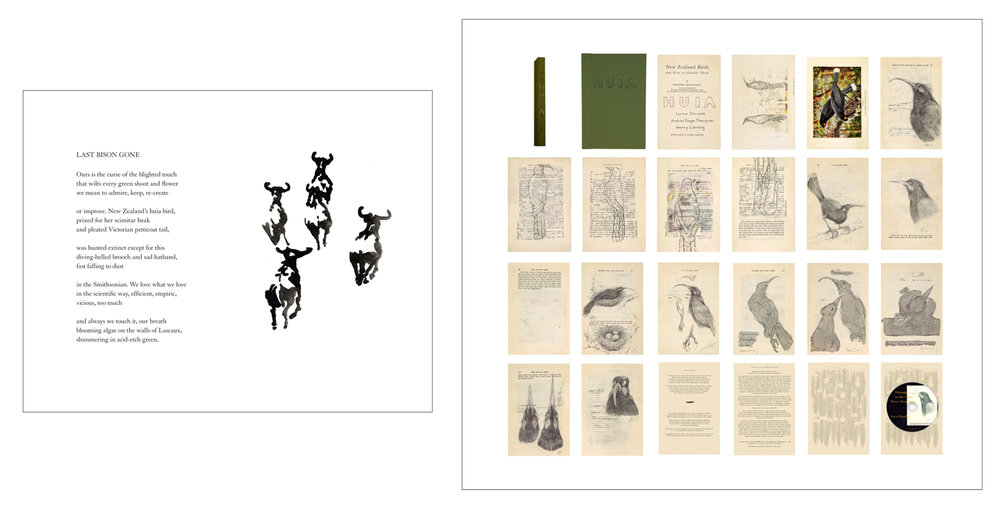 """Last Bison Gone"" and ""Herd"" (2010, framed archival print, 13.5 x 16.5 x 1.5 inches) from God, Seed: Poetry and Art About the Natural World, a book collaboration with poet Rebecca Foust published by Tebot Bach. Huia (2006, altered book, 9.25 x 6.25 x .75 inches) alters a 1925 edition of ""New Zealand Birds and How to Identify Them"" to include drawings of this extinct New Zealand bird by Henry Corning, Andrée Singer Thompson and Lorna Stevens."