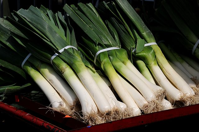 leeks resized