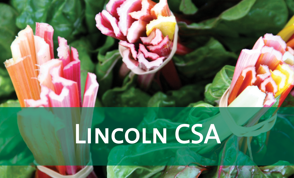 Lincoln On-Farm & Pick-Your-Own CSA