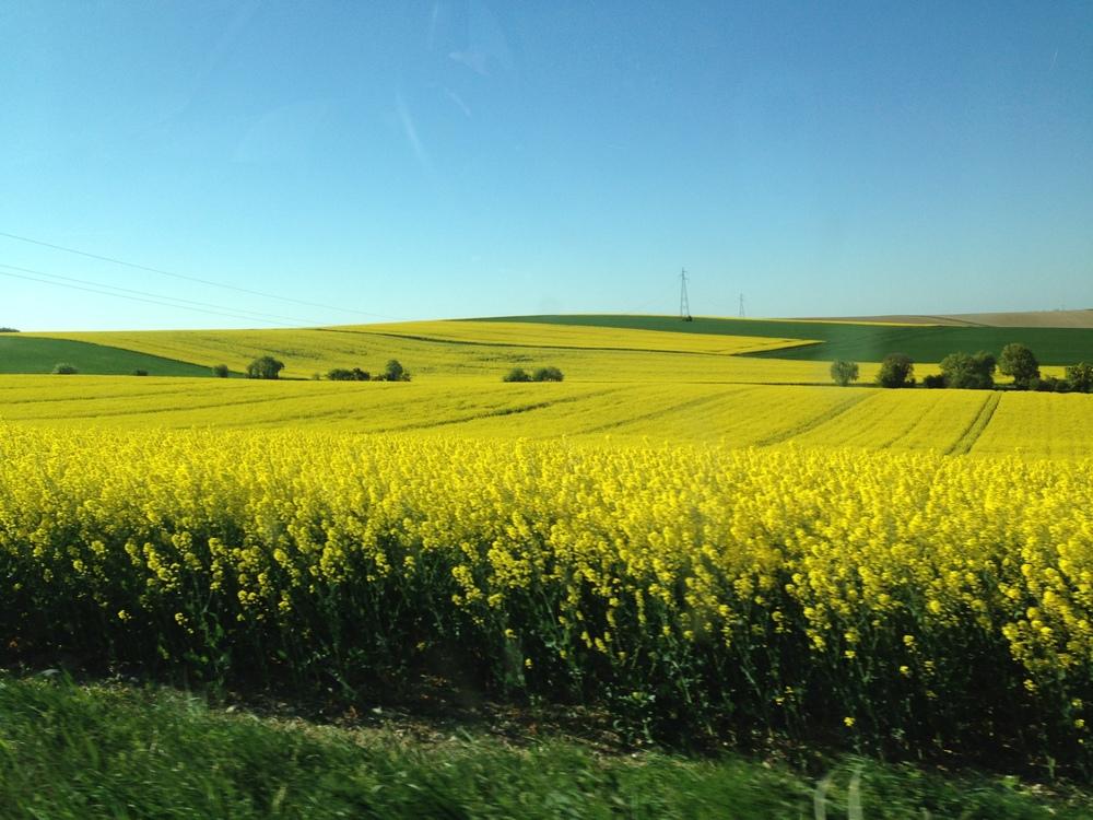 En route to Sancerre, France