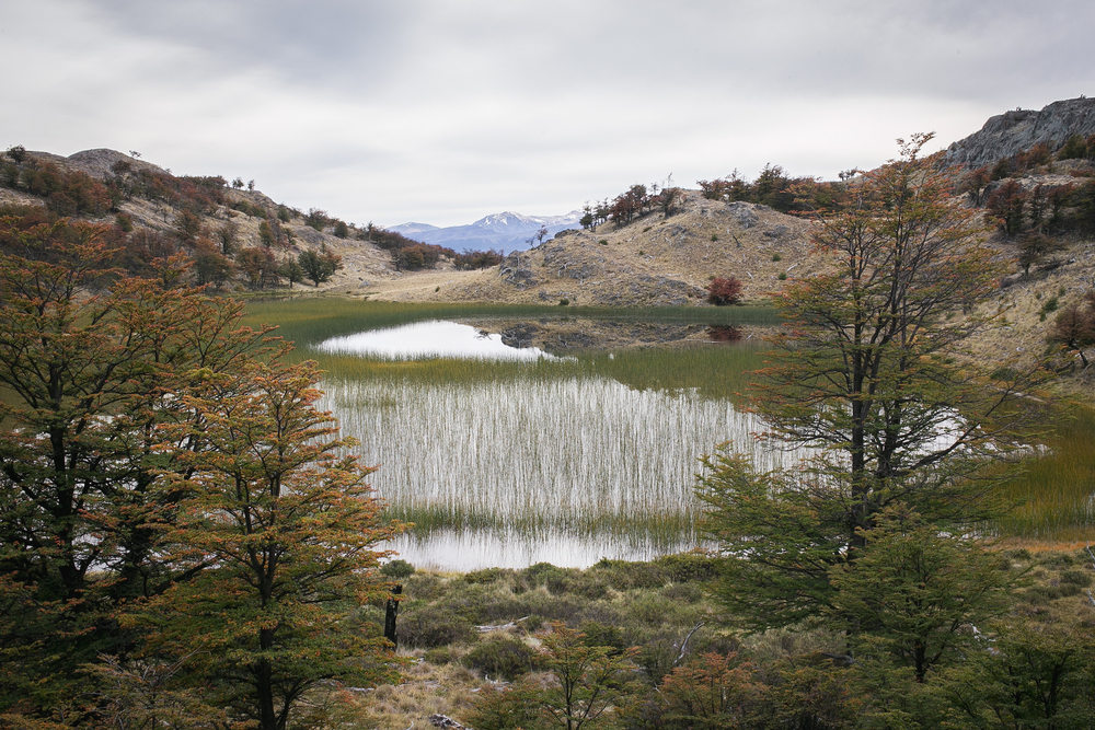 Patagonia2015-20.jpg