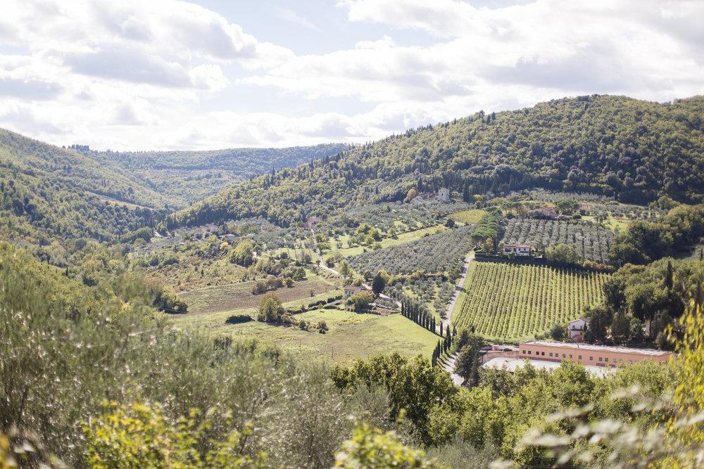 tuscany2015-25.jpg