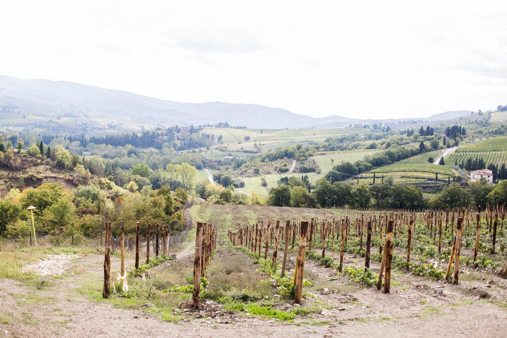 tuscany2015-189.jpg