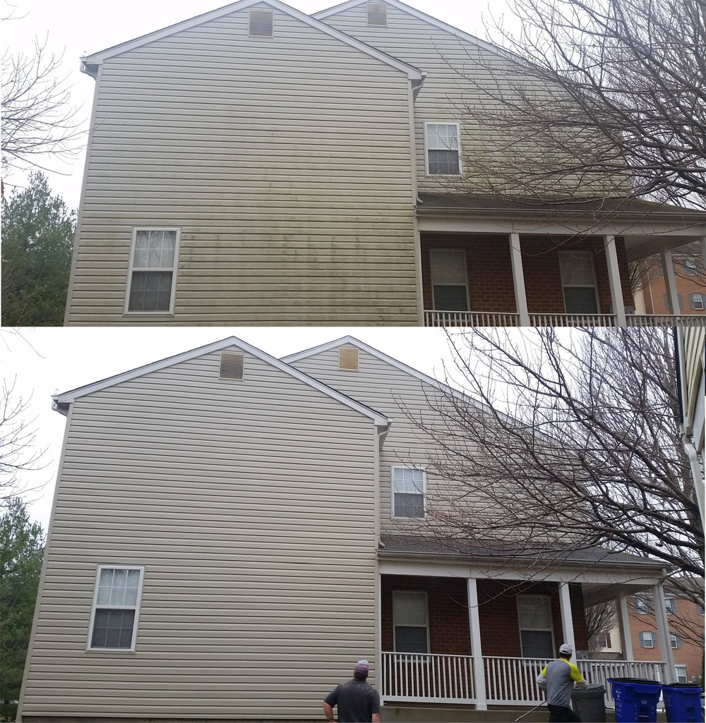 Home siding mold and mildew cleaning