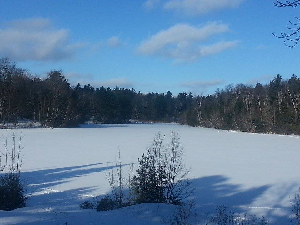 frozen lake 2.jpg