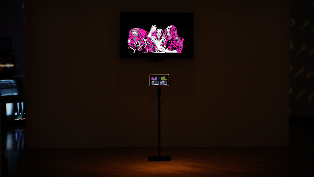 "PICTURING YOU: Installation view at ""Performing Media."""