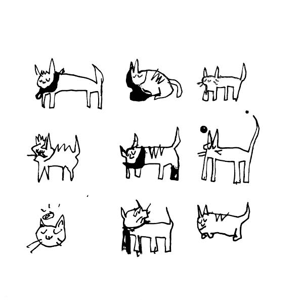 catrs.jpg