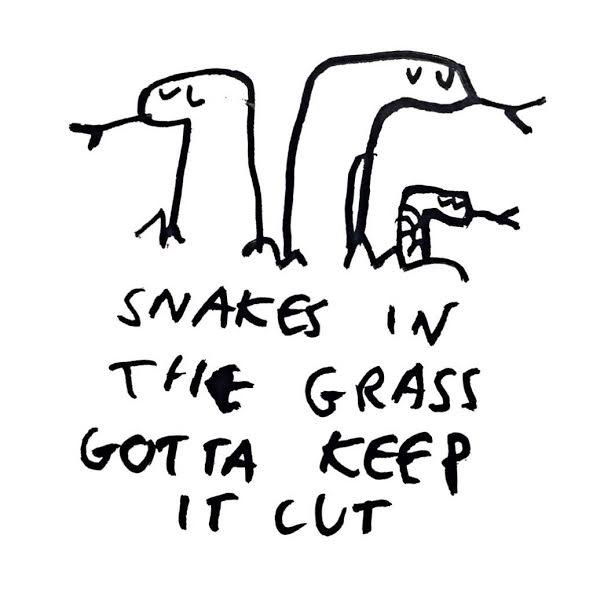 snakes in grass.jpg
