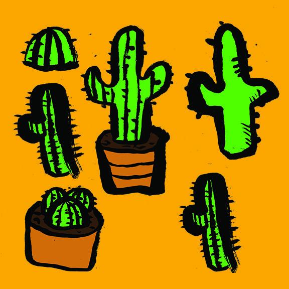group of cactus.jpg