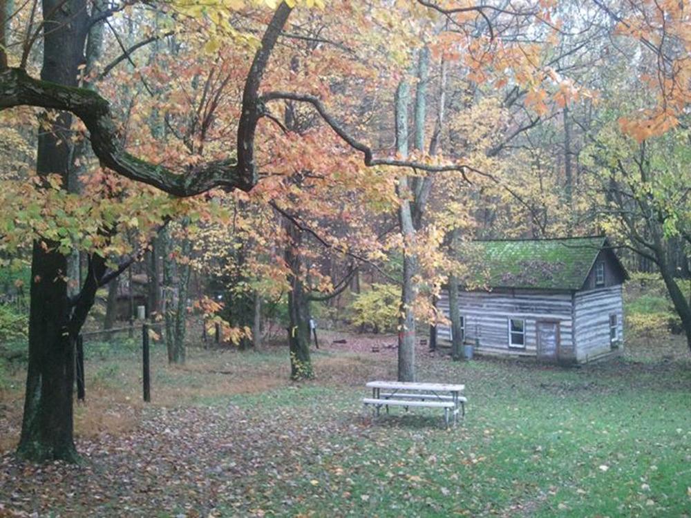 1. Nature Hut