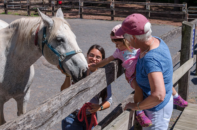 A grandmother and her granddaughter petting a horse during Moms & Tots.