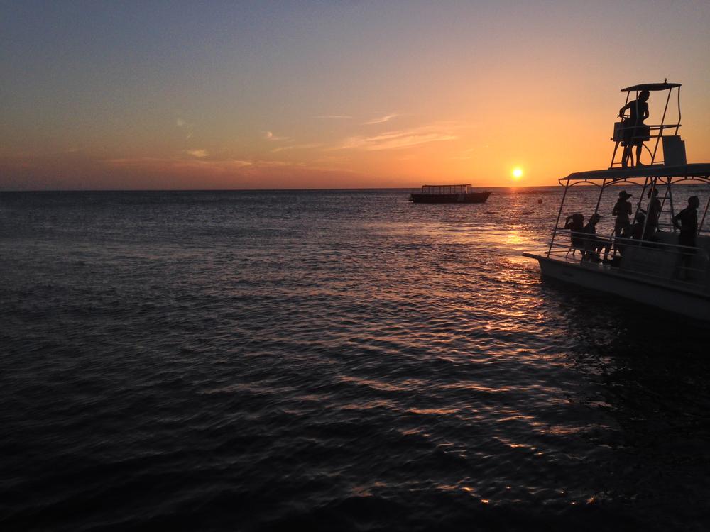 Delfin, in the evening; West End Divers, Roatán, Honduras.