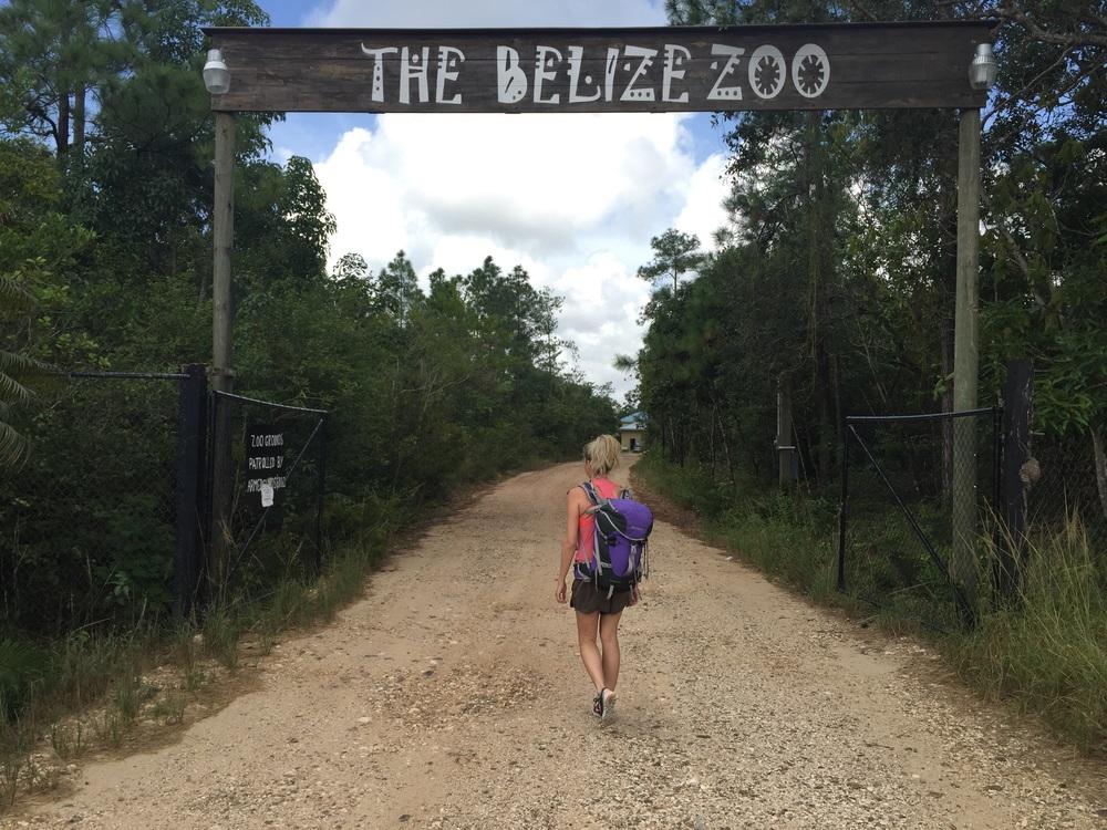 Belize Zoo, near La Democracia, Belize.