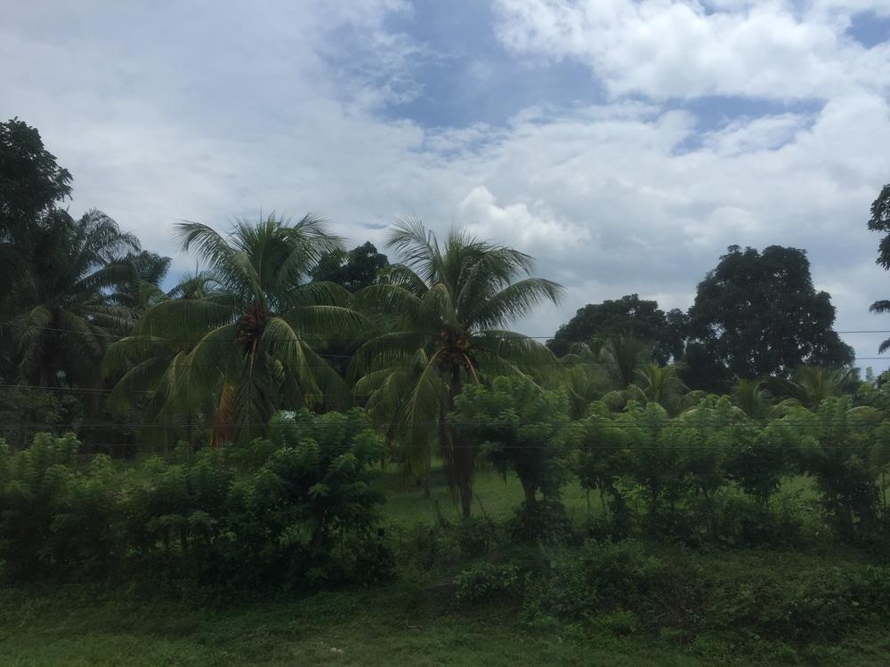 El Negrito, Yoro, Honduras.