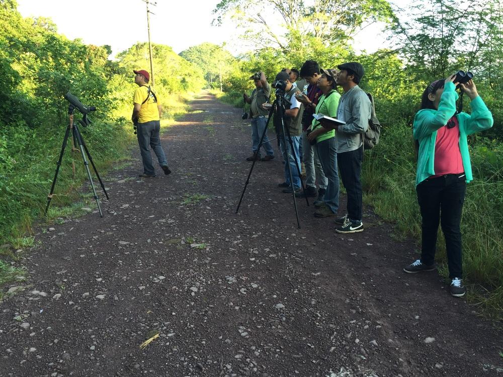 Birdwatching with Robert Gallardo; Lago de Yojoa, Honduras.