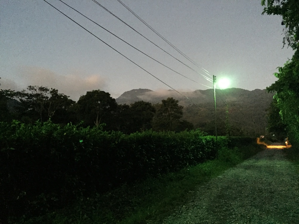 Santa Bárbara mountains in the distance, where some of the best coffee in the world is grown.