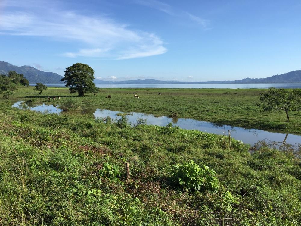 Lake Yojoa, at the foot of the Santa Bárbara mountains in Honduras.