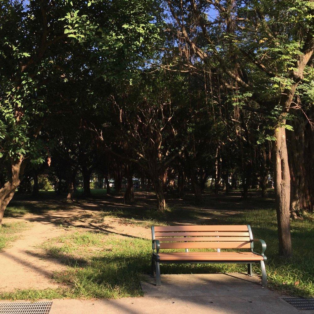 Da'an Park, Taipei, Taiwan.