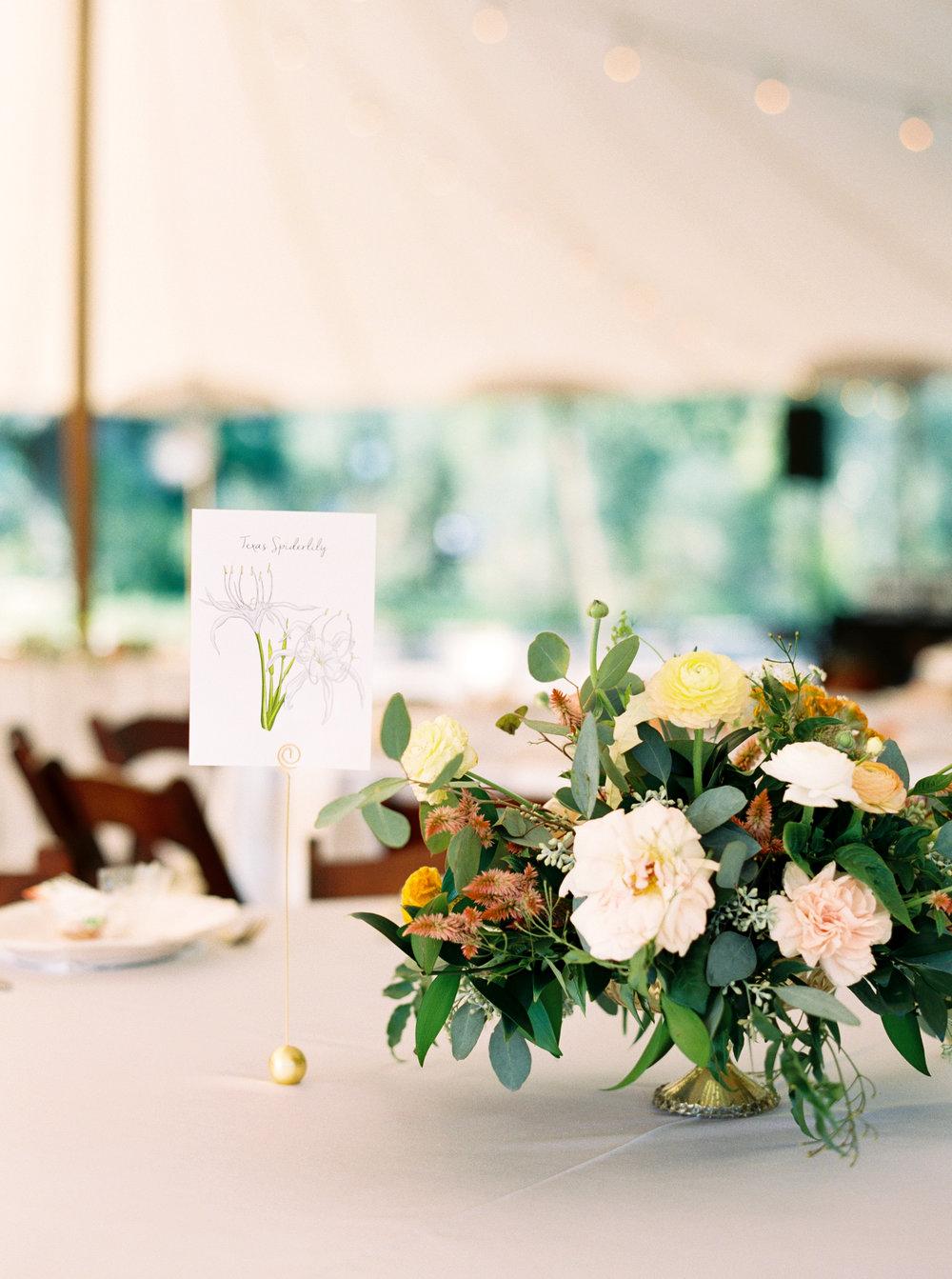 Best-Austin-Denver-California-Wedding-Photographer-Greenhouse-Driftwood8.jpg