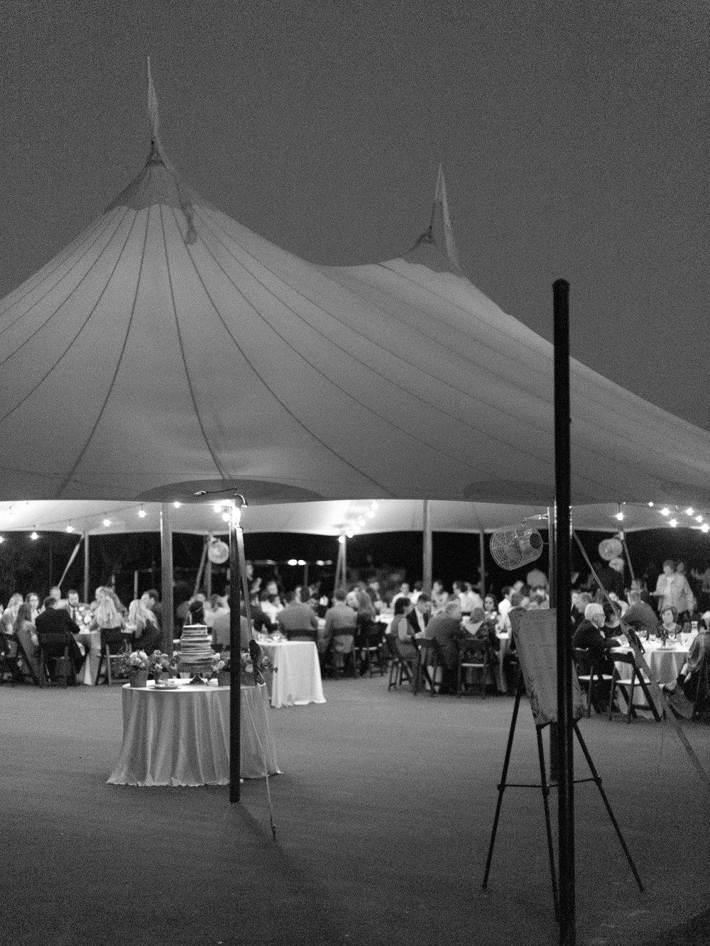 Best-Austin-Denver-California-Wedding-Photographer-Greenhouse-Driftwood39.jpg