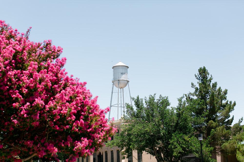 Best-Austin-Texas-Marfa-Wedding-Photographers-fine-art-film-5.jpg