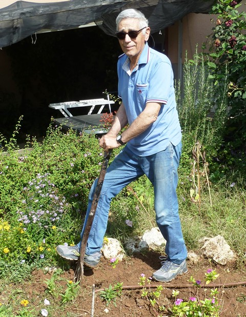 Over fifty years of garden design and construction - Mordechai in his element.