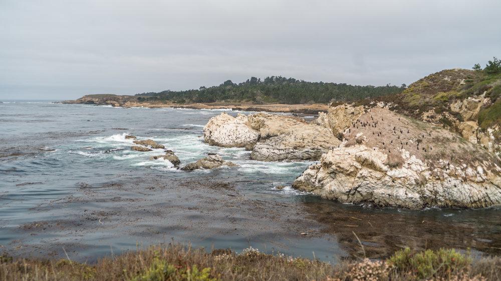 2017-09-09_IGSM_Monterey_Trip_DSC06861.jpg