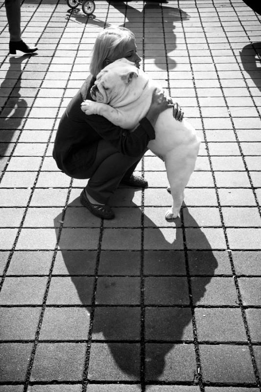 bulldoghug.jpg