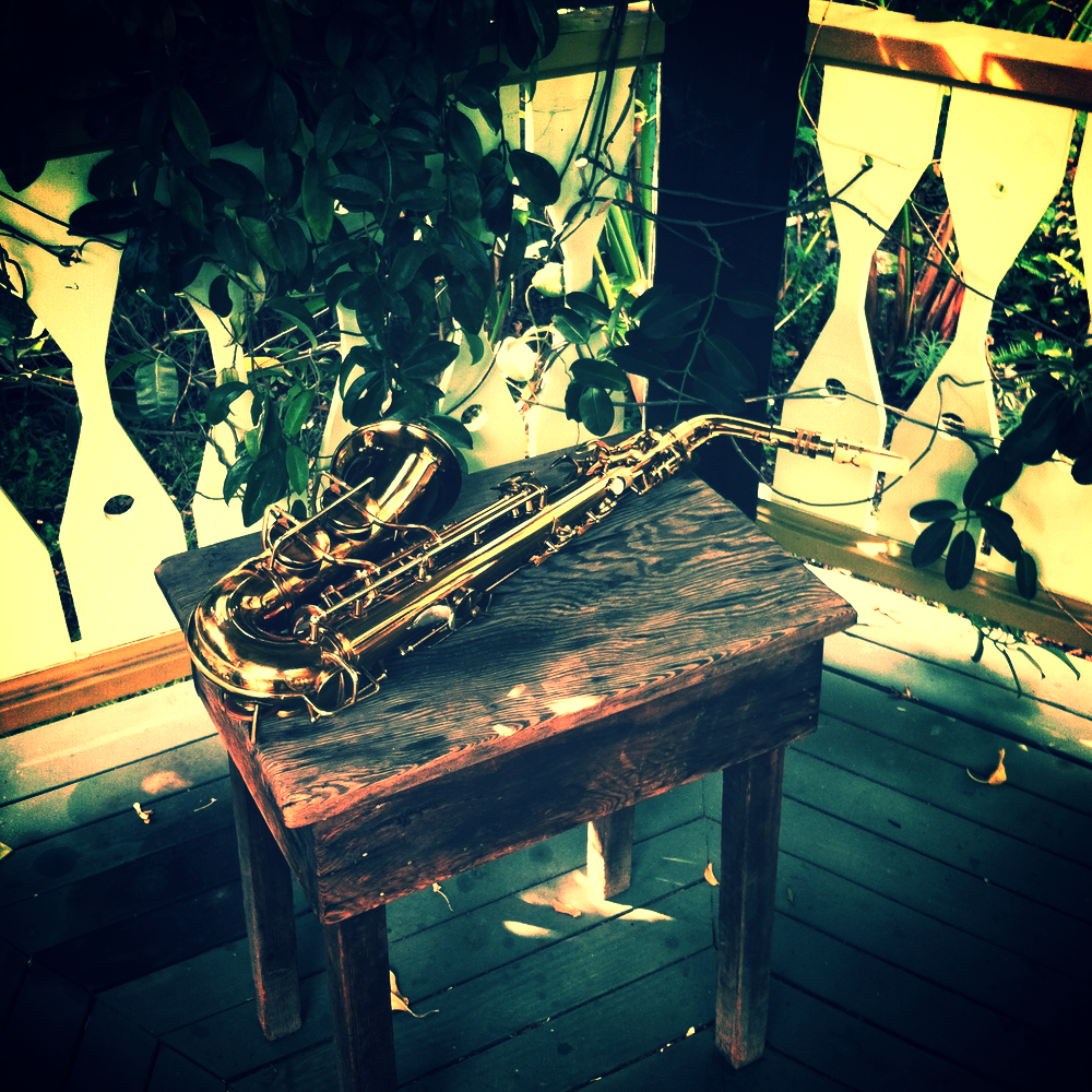 1934 Conn Transitional alto saxophone in a gazebo of carnivorous plants. Los Angeles, 2012. Photograph by Nick Mazzarella.