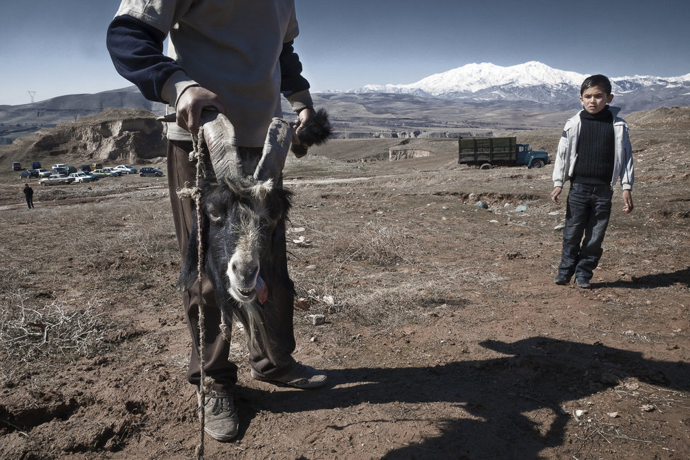 A young boy looks on in surprise at the decapitated head of a goat, freshly slaughtered for a game of buzkashi - a sort of proto-polo played with a goat carcass, few rules and no teams.