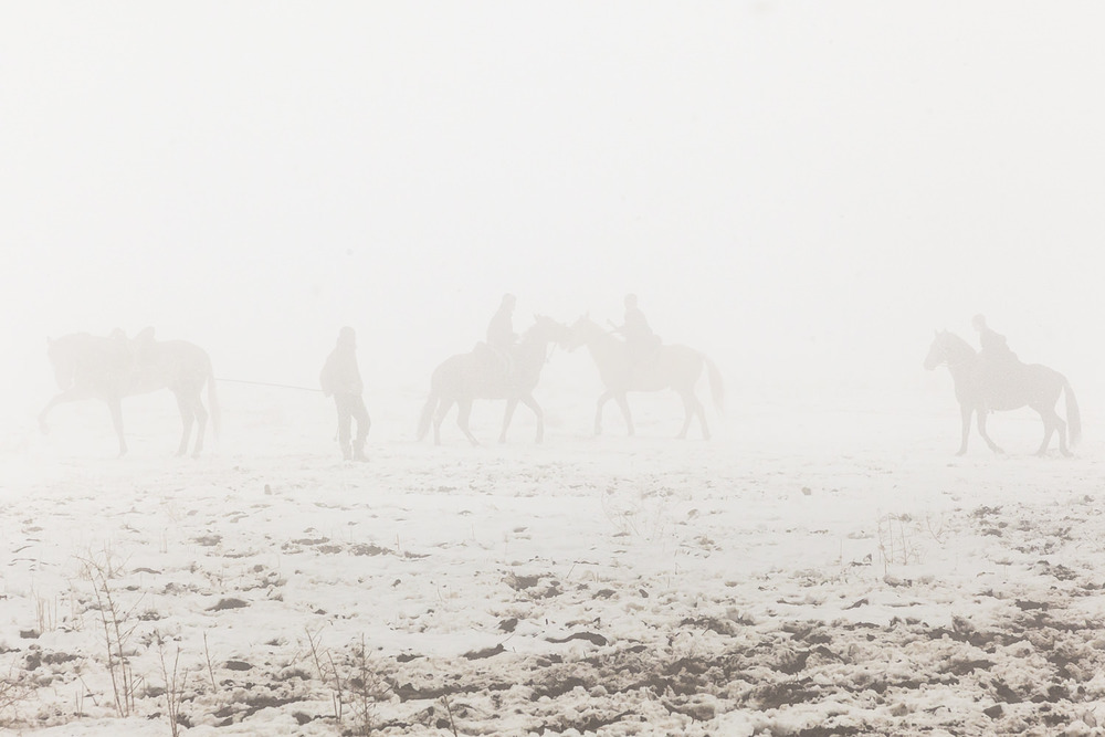 Buzkashi trainee riders exercise backup horses in the fog during a snowy match in Jirganak, Tajikistan.