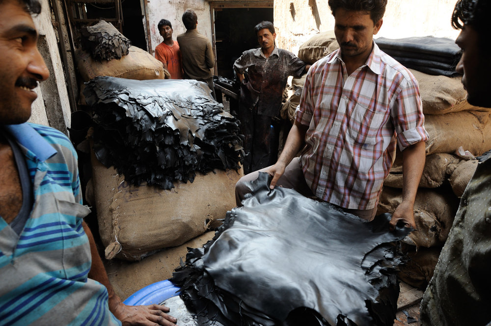 Growing tanneries such as this one in Dharavi, Mumbai, India, market animal hides for export.