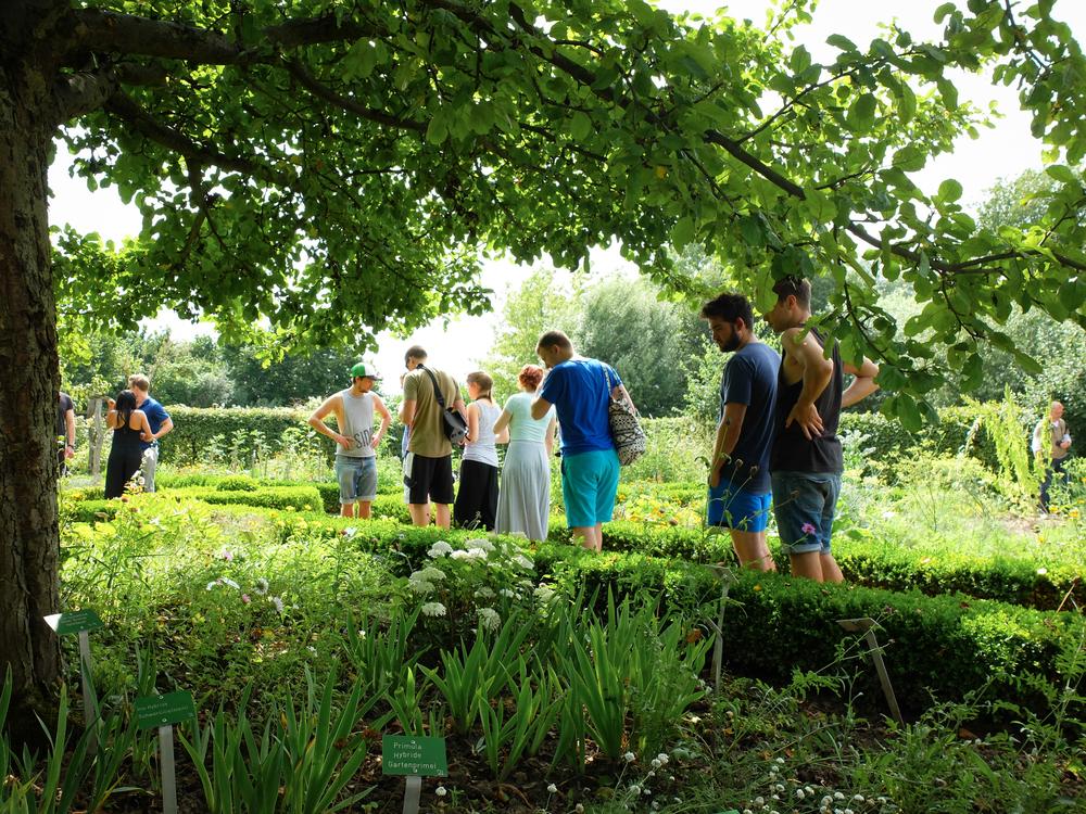 Kräutergartenbesuch