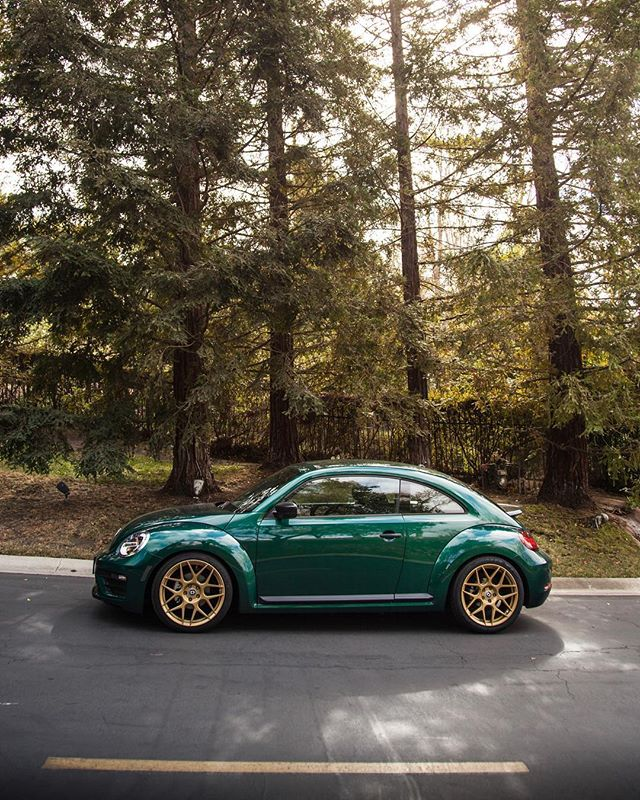 It's a @vw Beetle Christmas 🎄// #allroadoutfitters // #christmas // #vw // #beetle // #allroad // #vwbeetle // #toyotires // #hre // #stsuspension // #vwvortex // #neftin //#carswithoutlimits // #blacklist // #instadaily // #instagood // #photooftheday // #targatrophy // #stancenation // #bug // #swag // @toyotires @flowformwheels @st_suspensions @stancenation