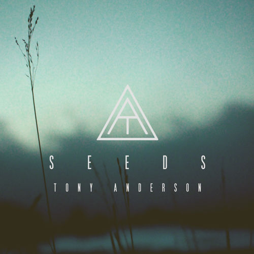 Tony Anderson \\\ Seeds (Single)  (2014)  Bass Guitar