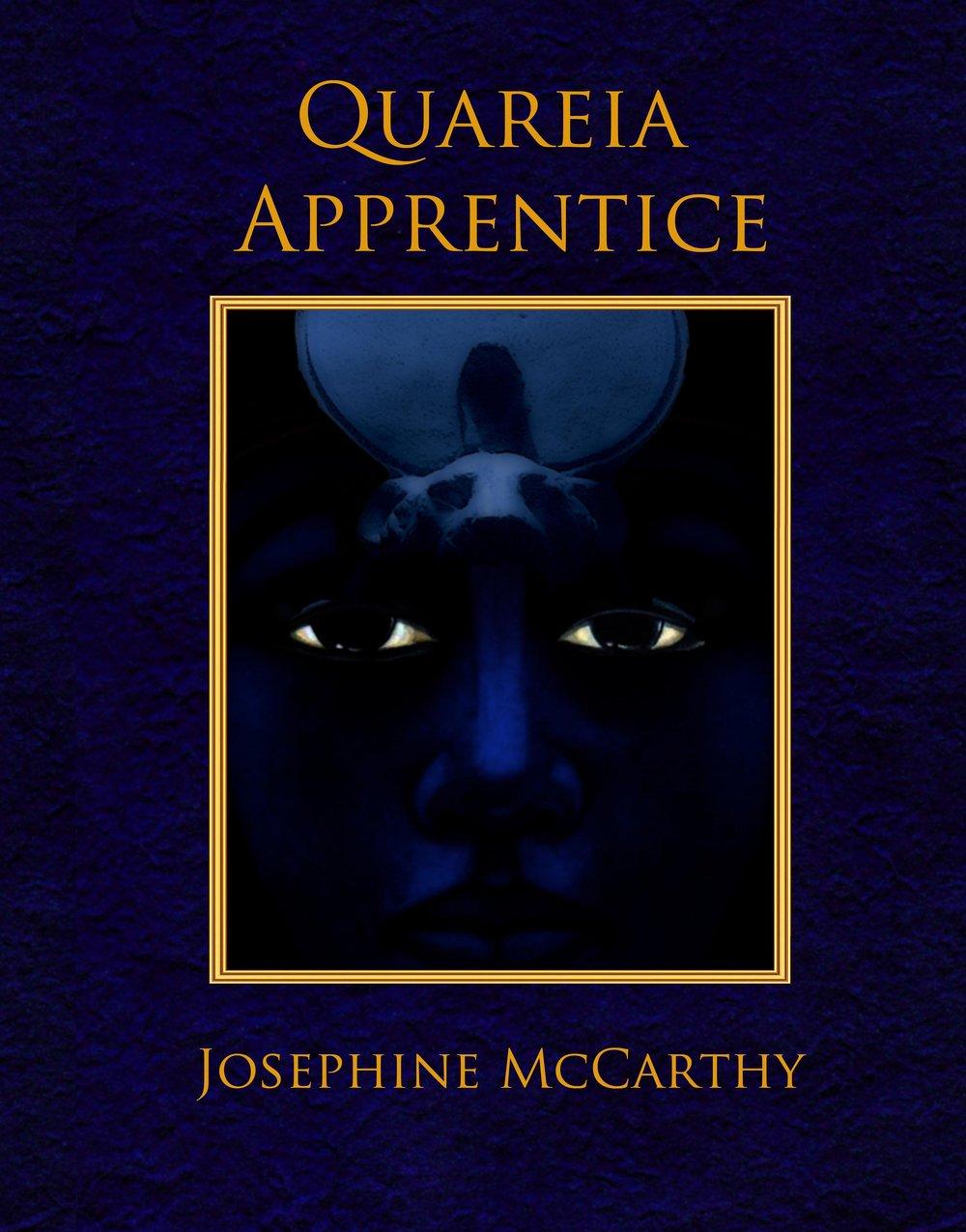 apprentice hardback.jpg