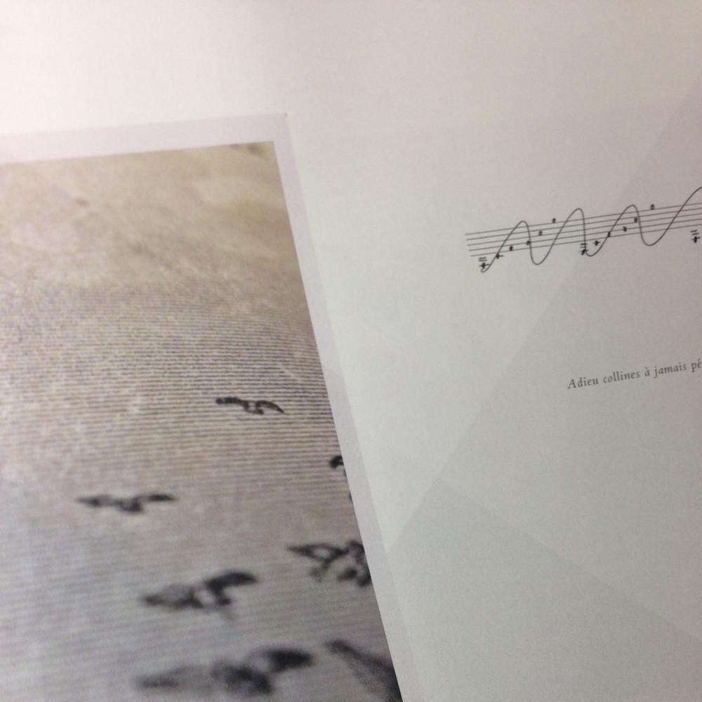 «Pour détruire le chagrin du monde», livre conçu par le groupe Belle Arché Lou autour du morceau du même nom, sera la première publication des éditions ISTI MIRANT STELLA et paraîtra le 17 novembre 2014.